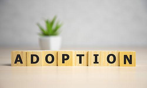 Affording Adopton Guide